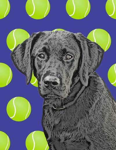 blacklabrador-pop-art