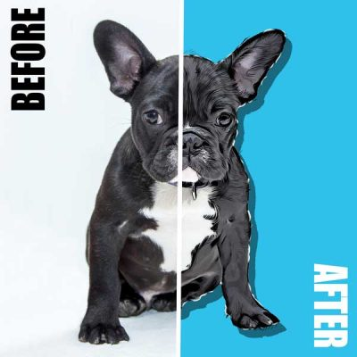 French Bulldog Pop Art Before After